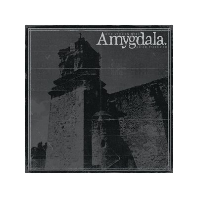 AMYGDALA - OUR VOICES WILL SOAR FOREVER - CD