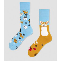 Many Mornings Socks - Playful Dog - Socken