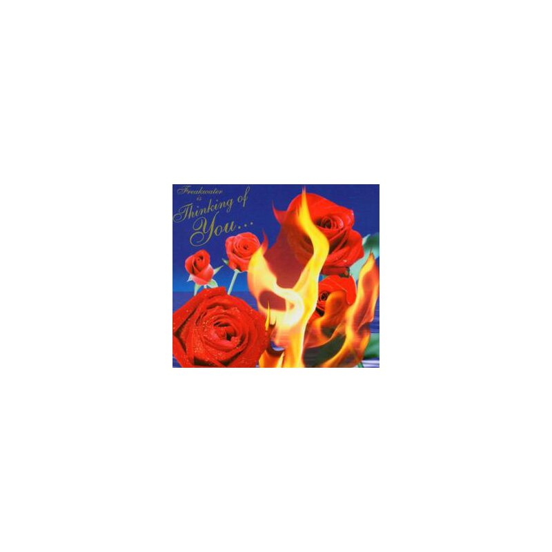 FREAKWATER - THINKING OF YOU - CD