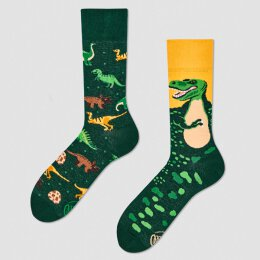 Many Mornings Socks - The Dinosaurs - Socken